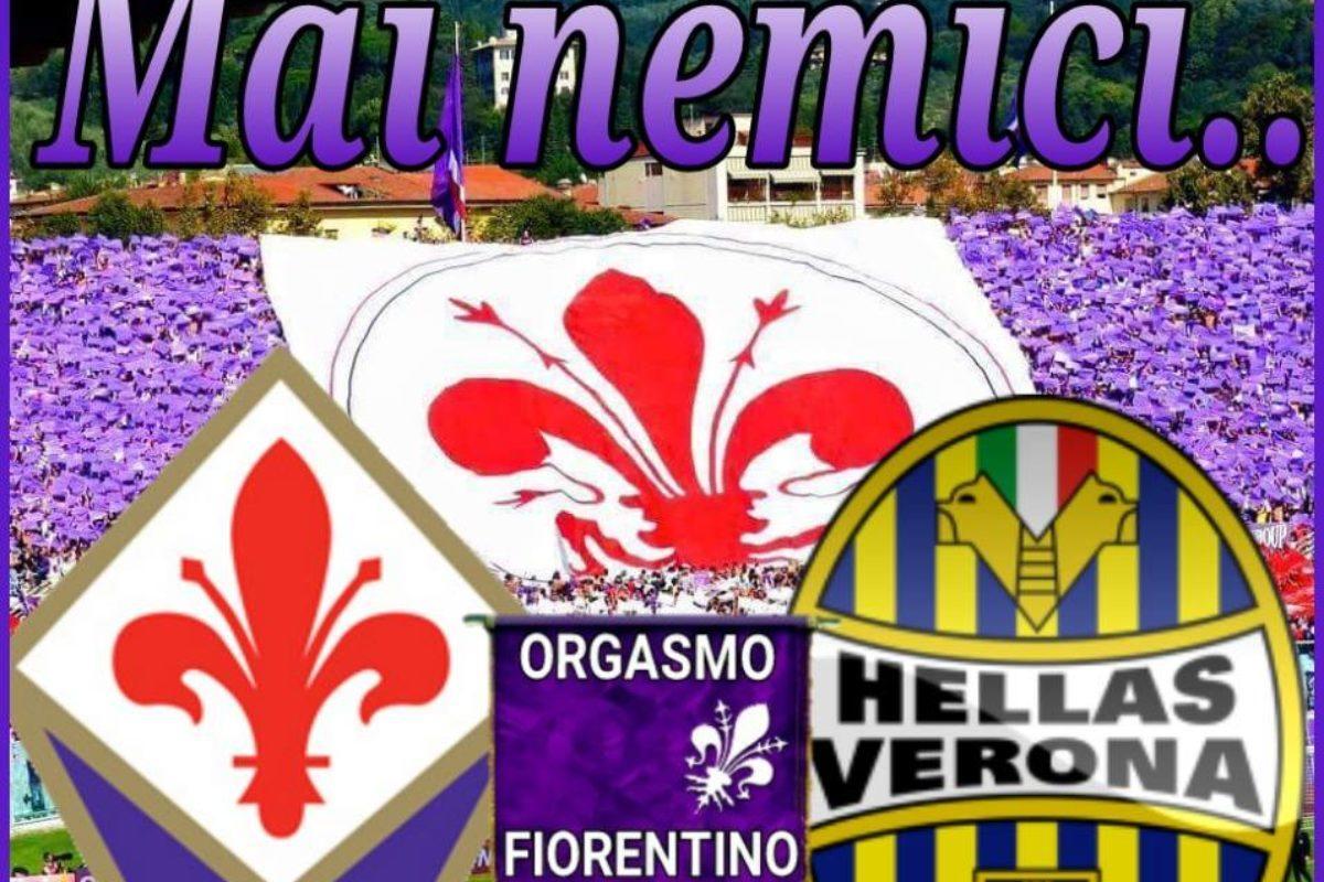 """Calcio: Urge """"elettroshock in casa Fiorentina"""""""