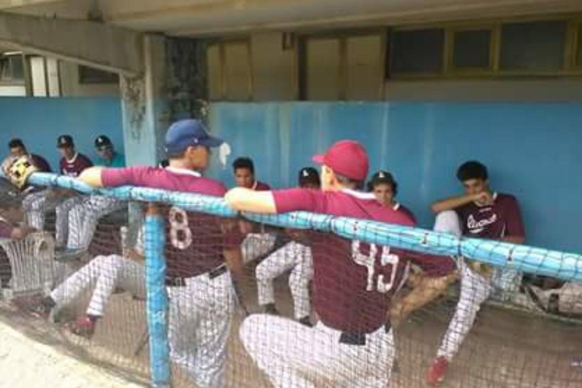 Baseball giovanile Finale torneo  Città di Firenze under 12 e under 16