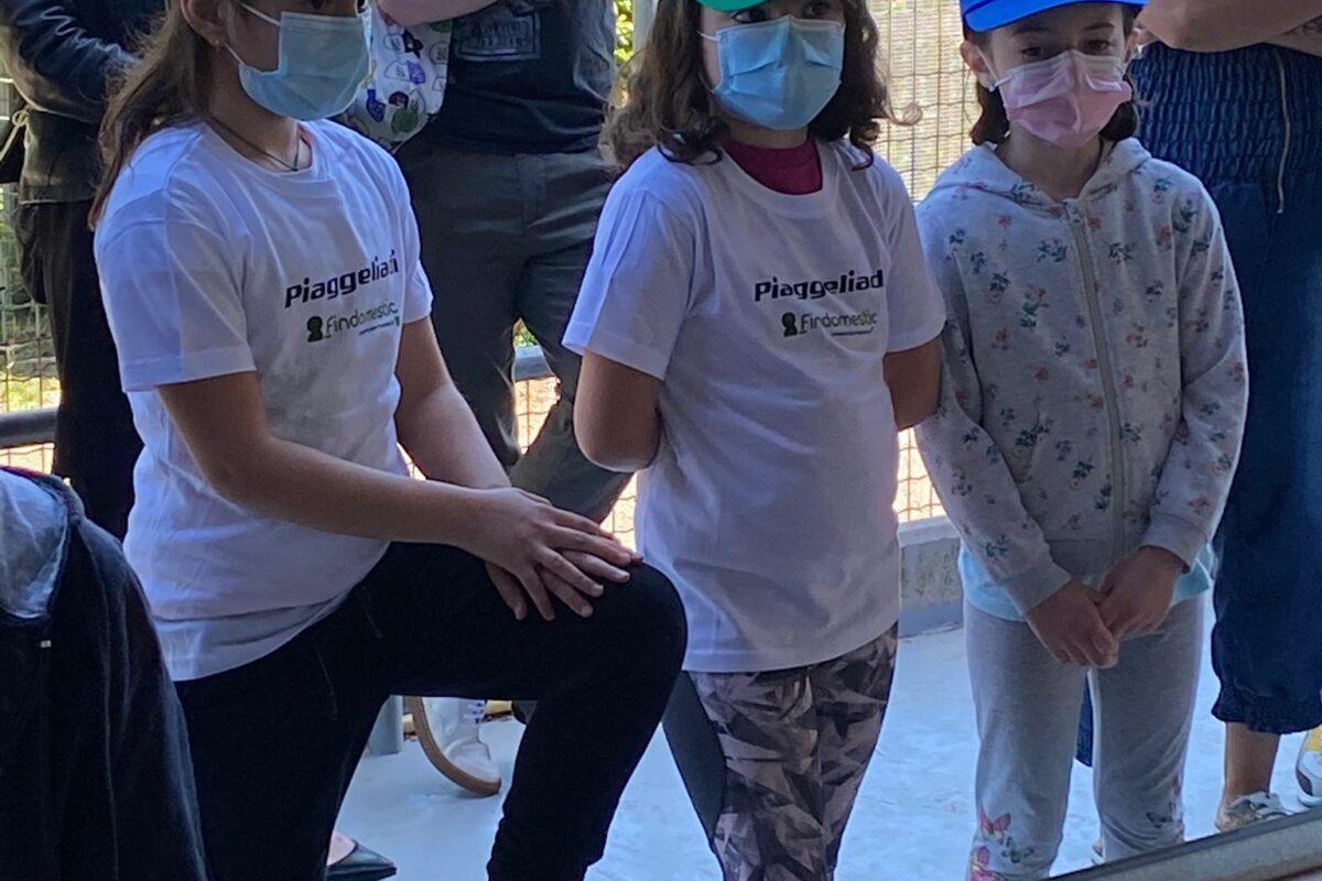 Le Piaggelliadi: Riceviamo e pubblichiamo i risultati ricevuti dalla Pol. Firenze Ovest ( GRAZIE)
