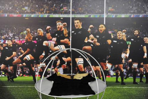 MUSEO DEL RUGBY 04